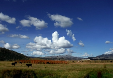 15-Rancho-el-chalan-CUSCO-PERU-photo-gallery